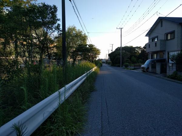 江川海岸までの道