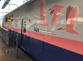 上越新幹線のMAX号(東京駅ホームにて)