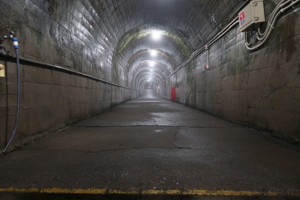 筒石駅内部の道