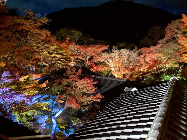 瑠璃光院の内部から見た紅葉のライトアップ