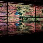 瑠璃光院の紅葉
