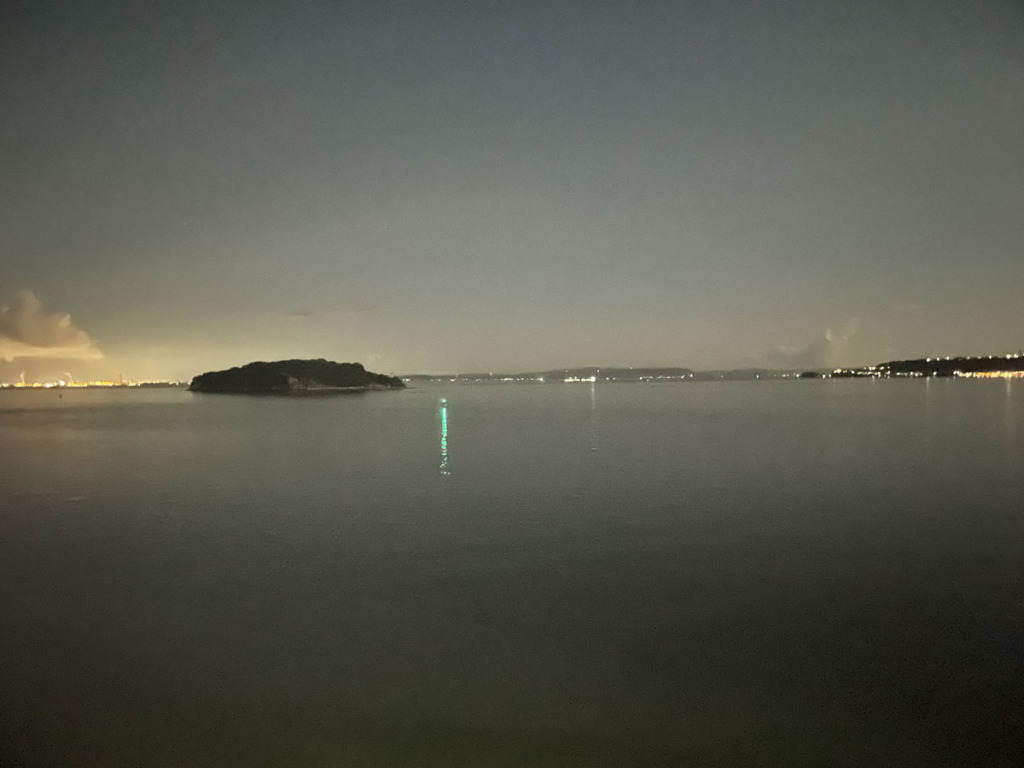 フェリ上から見る猿島