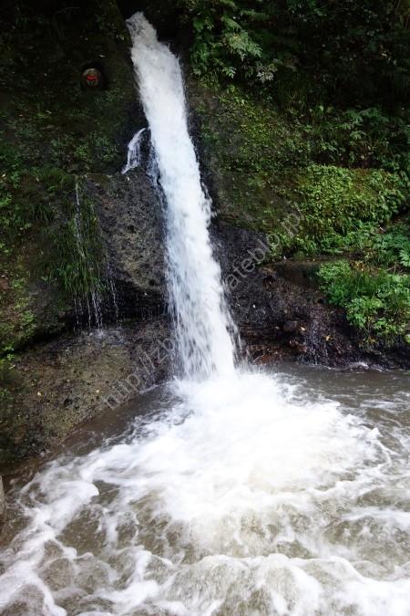 鶴仙渓遊歩道の滝