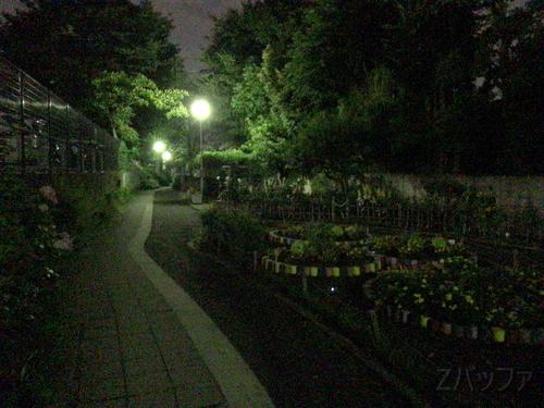 iPhone7カメラによる夜景写真