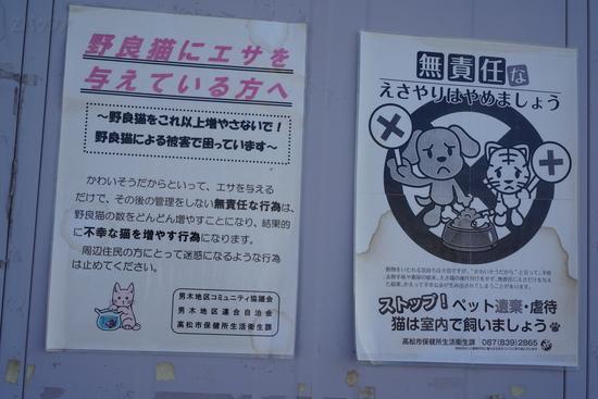 猫に対して餌を与えないよう注意喚起するポスター