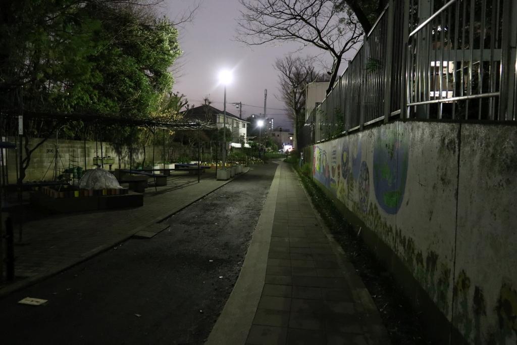 夜間でも大きなセンサーによって明るい写真が撮影可能