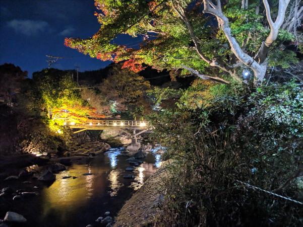 高野川と八瀬駅周辺の紅葉ライトアップ