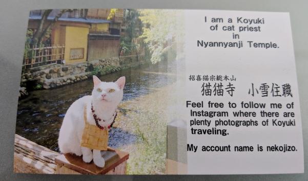 猫猫寺小雪住職の名刺