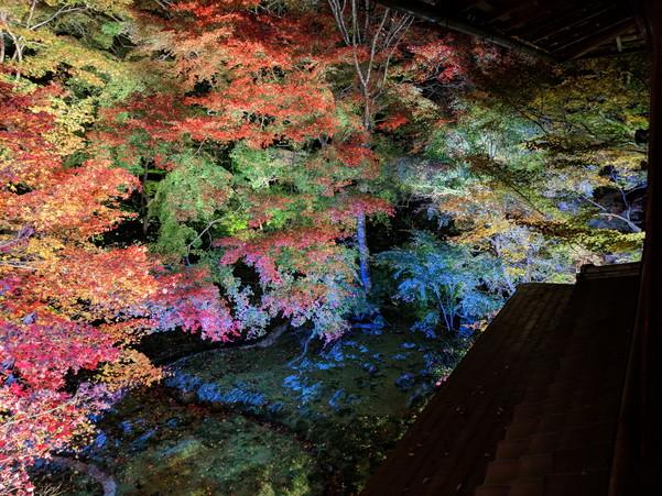 Pixel 3の夜景モードで撮影した京都瑠璃光院の紅葉