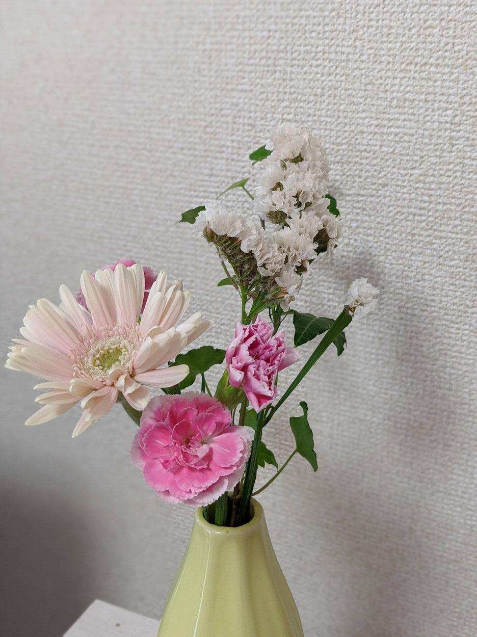 ブルーミーライフから隔週で届くお花たち