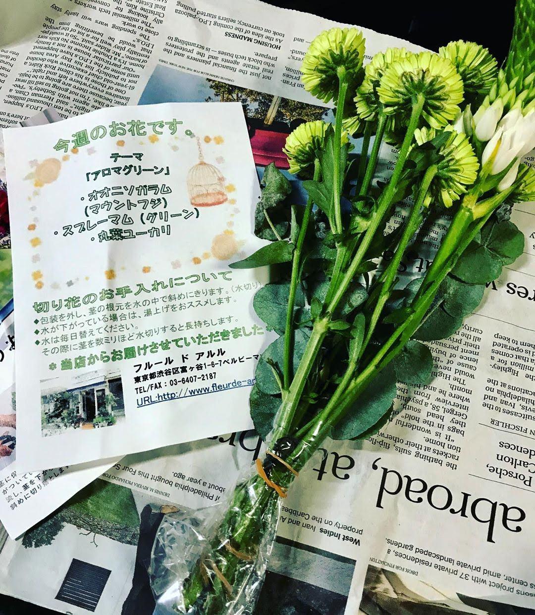 お花の紹介が同梱されています