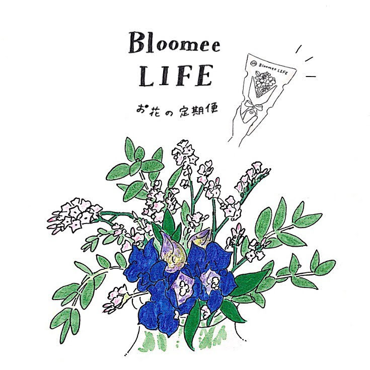 お花の定期便「Bloome LIFE」