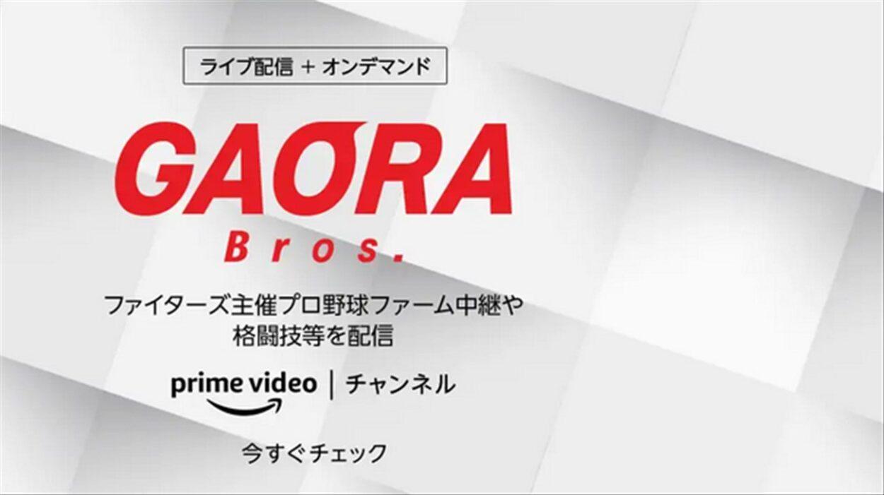AmazonプライムビデオチャンネルのGAORA Brosチャンネル
